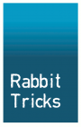 Rabbit Tricks